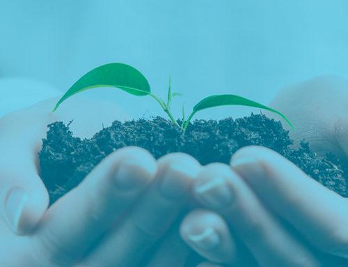 Inversiones en Medio Ambiente 2020 – Gobierno Vasco / Departamento de Medio Ambiente, Planificación Ambiental y Vivienda