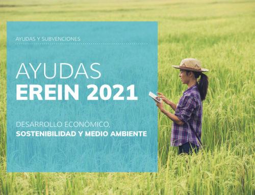 Programa Ayudas EREIN Privados 2021