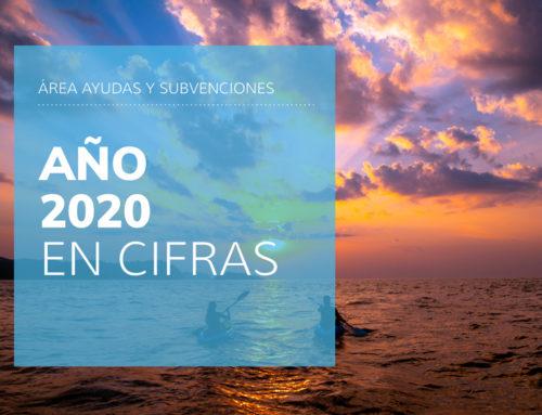 Año2020 en cifras –Área de Ayudasen Sayma